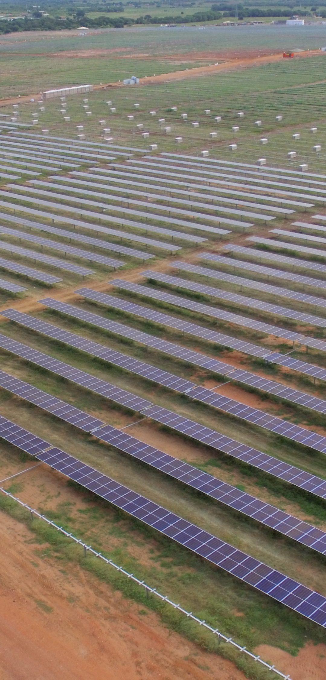 Obra Parque Solar Brígida está em ritmo acelerado de execução